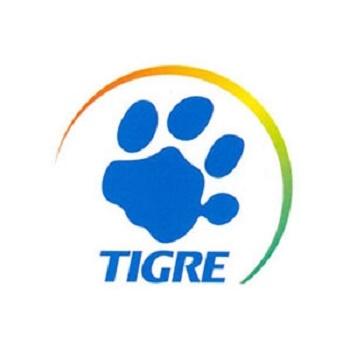 Pinceis Tigre